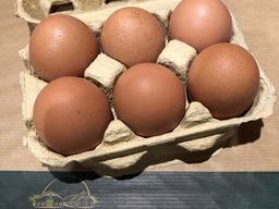 Eieren 6